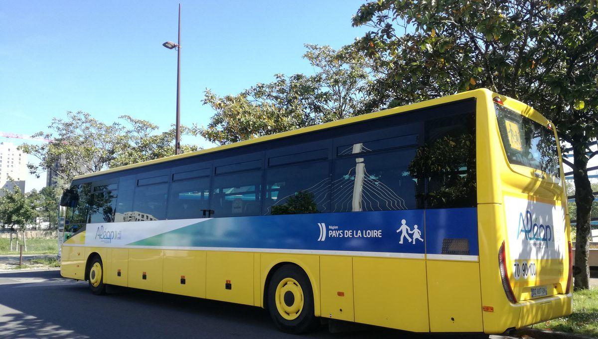 Cars Bleus  Transport scolaire