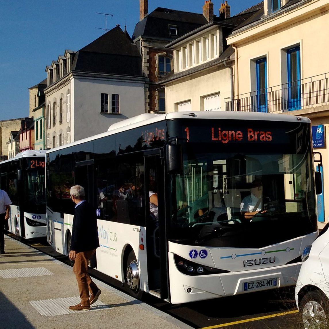 testimonial may bus